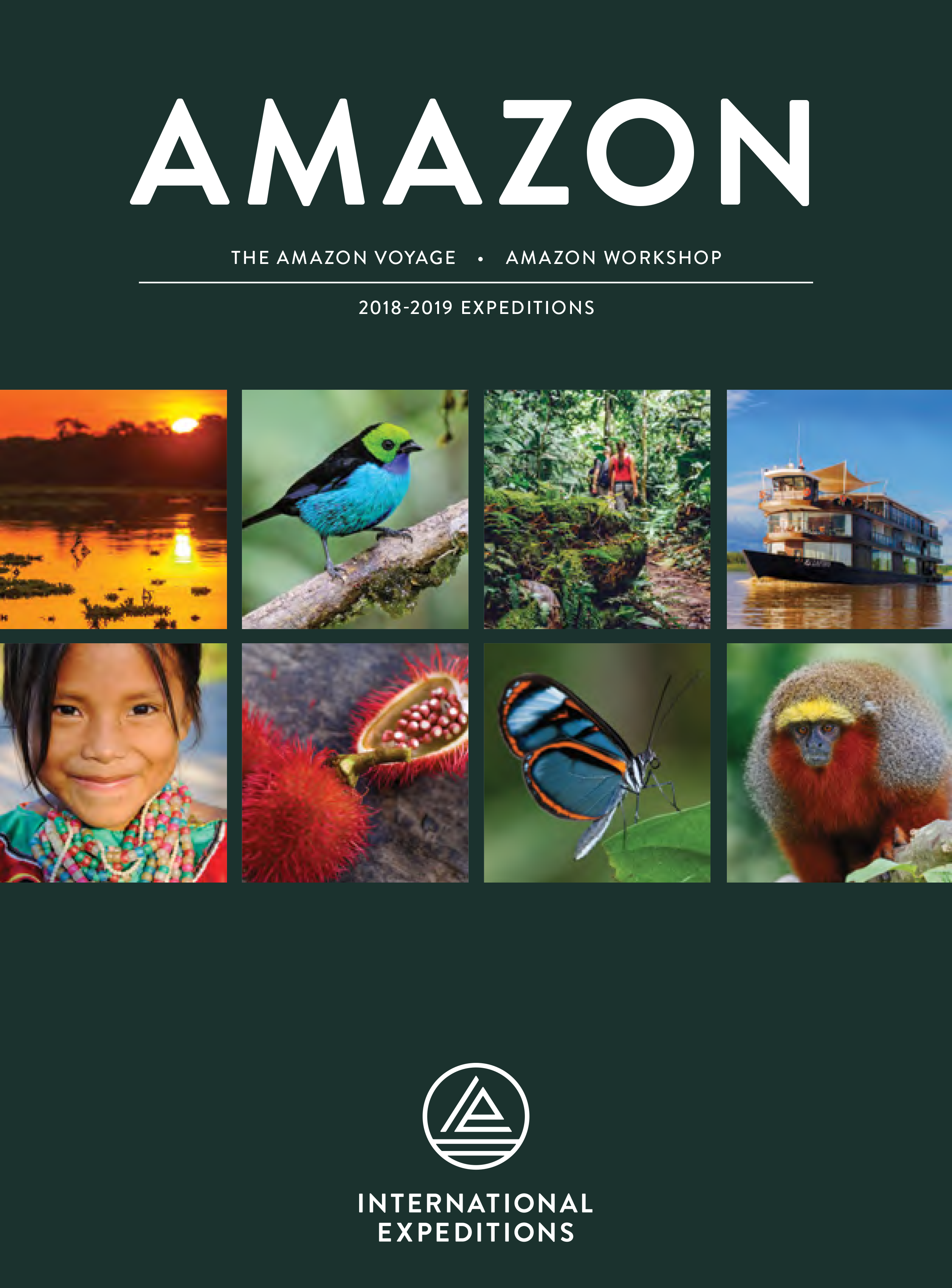Amazon Guide 2018.png