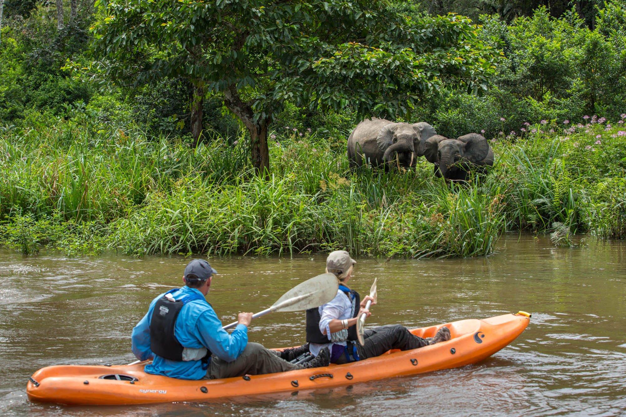 Kayak Africa, Travel Africa, Africa Safari Guide, Luxury African Safari