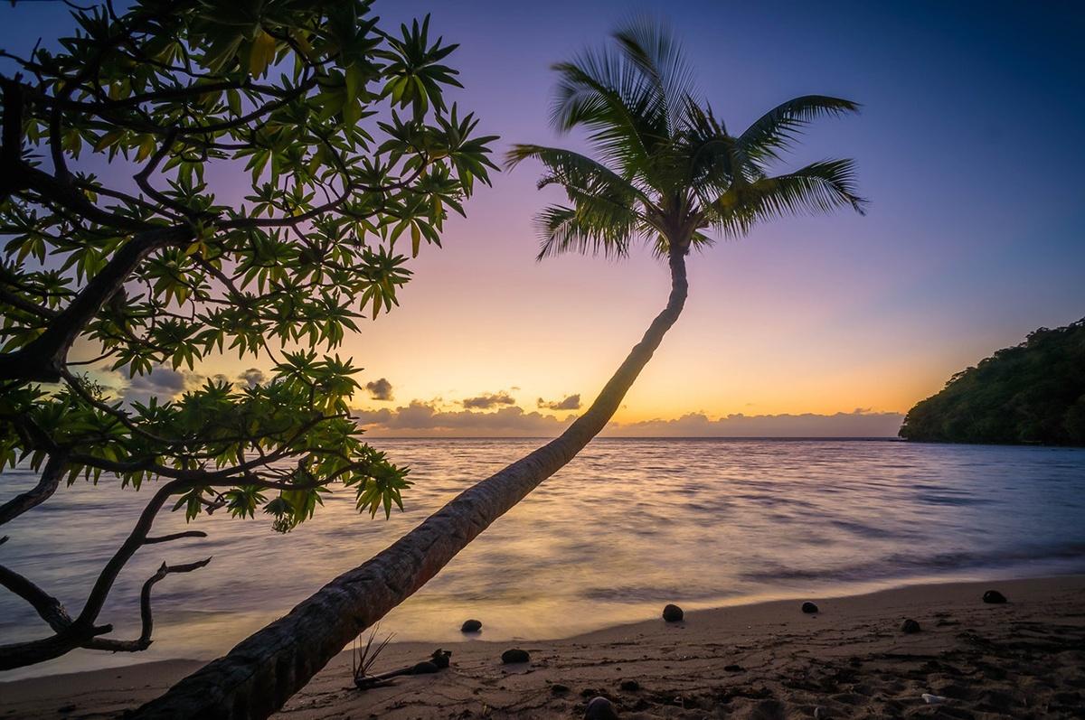 caribbean.jpeg