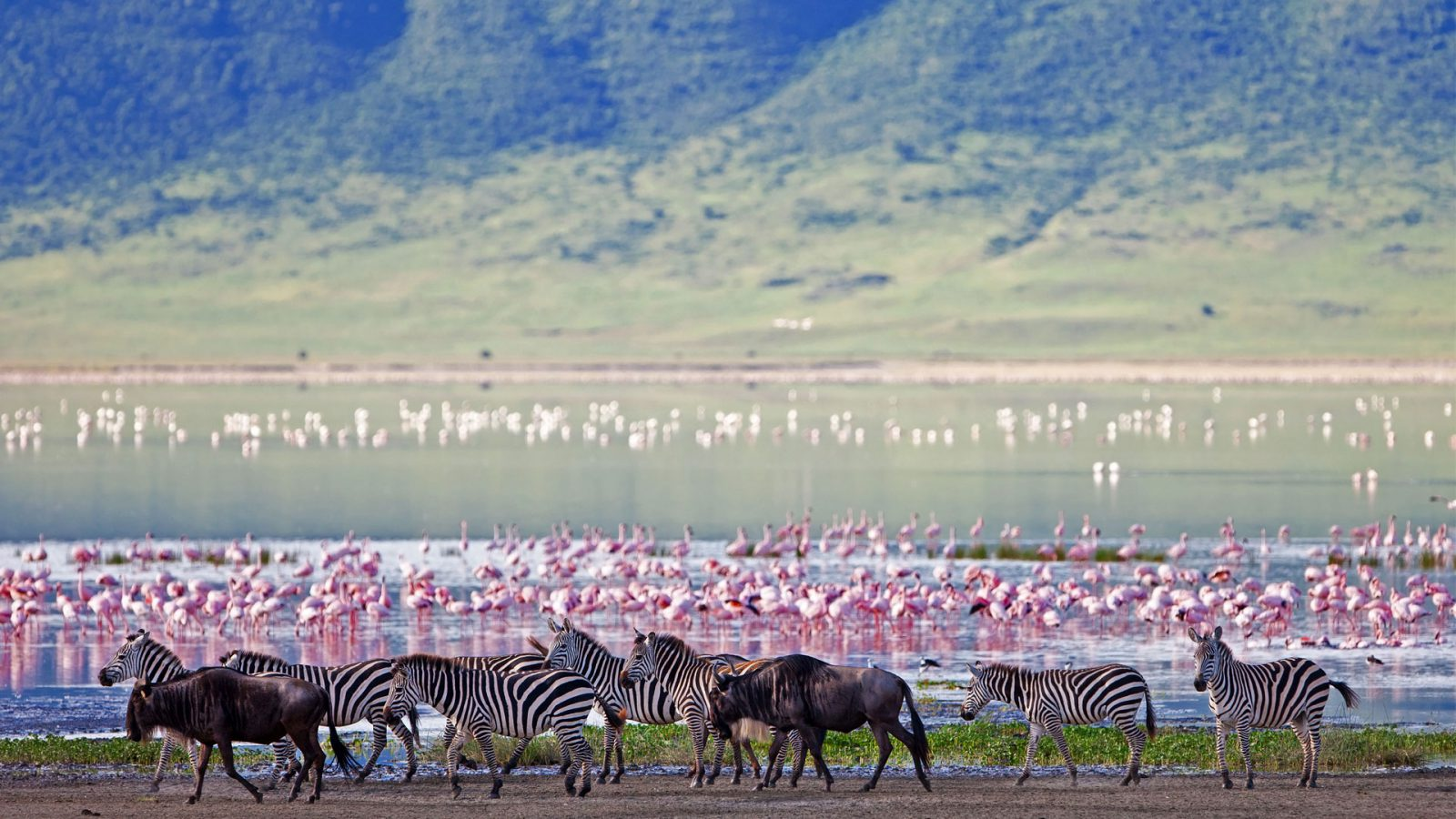 Travel Africa, Africa Safari Guide, Ngorongoro crater, Luxury African Safari